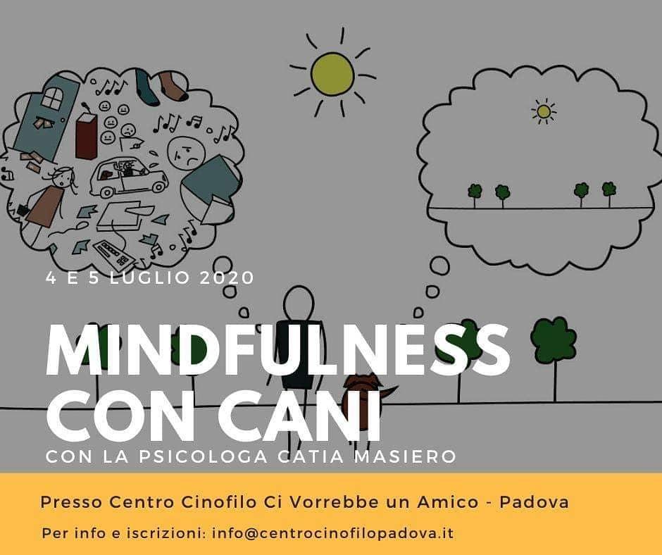 mindfulness cani